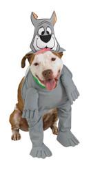 Astro Pet Costume Large