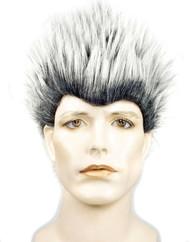 Porcupine Wig