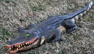 Alligator Swamp Foam Fill 4ft