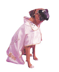 Pet Costume Hound Dog