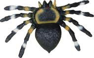 Soft Spider