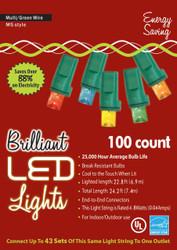 Holiday Lights 100l M5 Mu