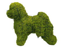 Bichon FriseTopiary Dog Sculpture