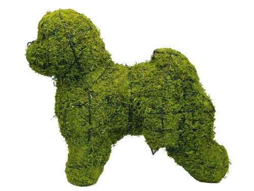 Bichon Frise Mossed Topiary Dog