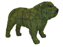 Bulldog Topiary Dog Sculpture