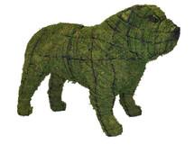 Bulldog Topiary Dog Sculpture