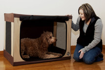 Travel Lite Soft Pet Crate