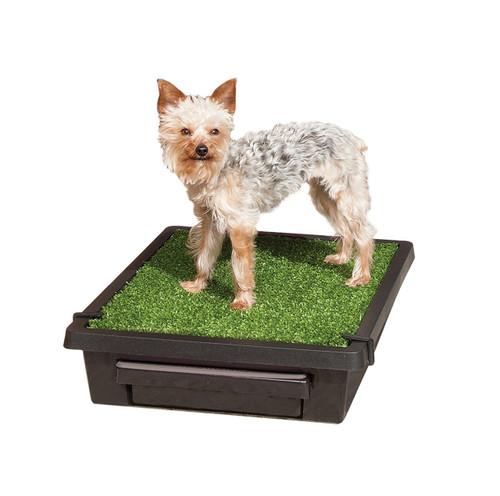 Aliexpress Com Buy Dog Portable Outdoor Travel Water: Pet Loo Indoor/Outdoor Pet Toilet