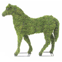 """Arrives pre-filled with green sphagnum moss - you can add plants or use """"as is"""""""