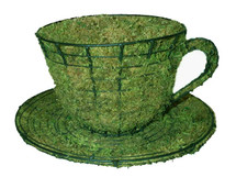 Teacup & Saucer Mossed Topiary