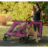 Boysenberry No-Zip Expedition Pet Stroller features a large rear entry door