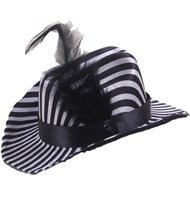 Dog Zebra Hat