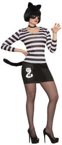 Ladies Cat Burglar Fancy Dress Costume