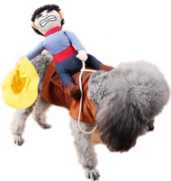 Dog Bucking Bronco Fancy Dress Costume