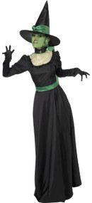 Ladies Longer Length Wicked Witch Fancy Dress Costume