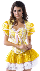Ladies Goldilocks Corset Fancy Dress Costume