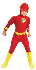 Boys Deluxe Flash Fancy Dress Costume
