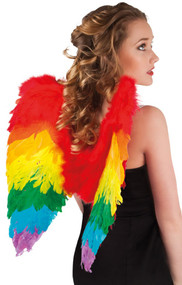 Ladies Rainbow Feather Wings
