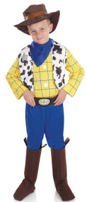 Boys Cowboy  Fancy Dress Costume 2
