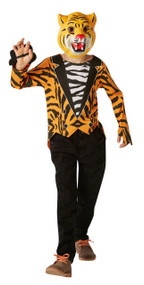 Boys Mr. Tiger Fancy Dress Costume