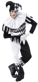 Mens Harlequin Jester Fancy Dress Costume