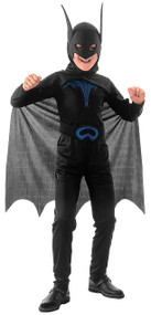 Boys Bat Fancy Dress Costume