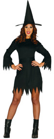 Ladies Black Witch Fancy Dress Costume