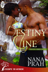 Destiny Mine (Destiny African Romance #2)