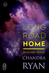 Long Road Home (Black Hills Wolves #30)