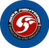 Soul Fighters Adult Circle Chest -