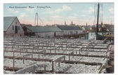 East Gloucester, Massachusetts Postcard:  Drying Fish