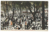 Beardstown, Illinois Postcard:  Crowd in Park on Annual Fish Fry Day