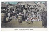 Gloucester, Massachusetts Postcard:  Wharf Scene