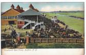 Buffalo, New York Vintage Postcard:  Kenelworth Race Track