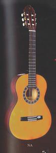 Valencia 1/2 Size Guitar Complete Set Up Starter Pack