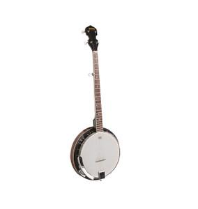 BRYDEN - 5-string Banjo