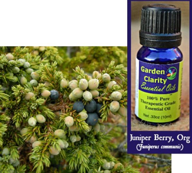 Juniper Berry, Organic