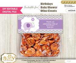 DIY Text Editable Girl Elephant Goodie  Treat Bag Toppers, Favor Bag Digital File, print at home  b