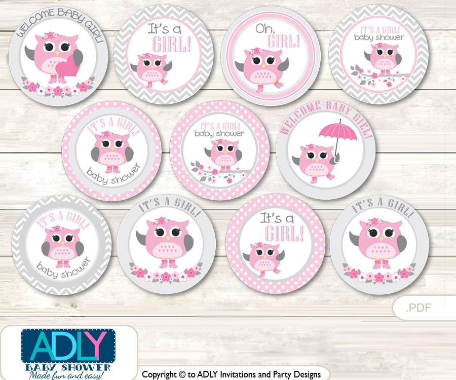 Baby Shower Spring Owl Cupcake Toppers Printable File for Little