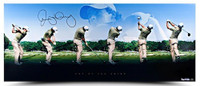 "RORY McIlroy Hand Signed ""Art of The Swing"" Panoramic Photo UDA LE 250"