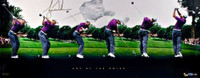 "TIGER WOODS Signed ""Art of the Swing"" Panoramic LE 250 UDA"