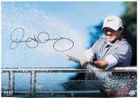 "RORY McIlroy Hand Signed 16 x 20 ""Spray Of Victory"" Photograph UDA LE 100"
