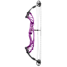 Hoyt Prevail Compound Bow - Purple (Matte Finish)