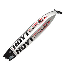 Hoyt GP Carbon ACE Limbs