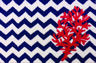 Chevron and Coral Small Mat