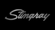 C3 Corvette Stingray License Plate