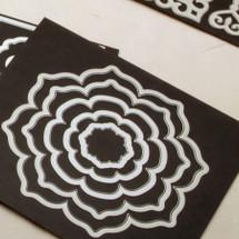 Magnet cards for storing steel wafer dies