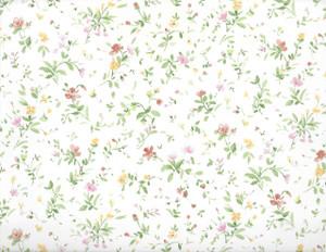 NC764.30 - WP -Cream Floral