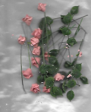 Dollhouse Miniature - 1815-1 - Peach Roses - Loose