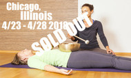 **SOLD OUT** VSA Singing Bowl Vibrational Sound Therapy Certification Course Chicago, Il April 23-28 2018